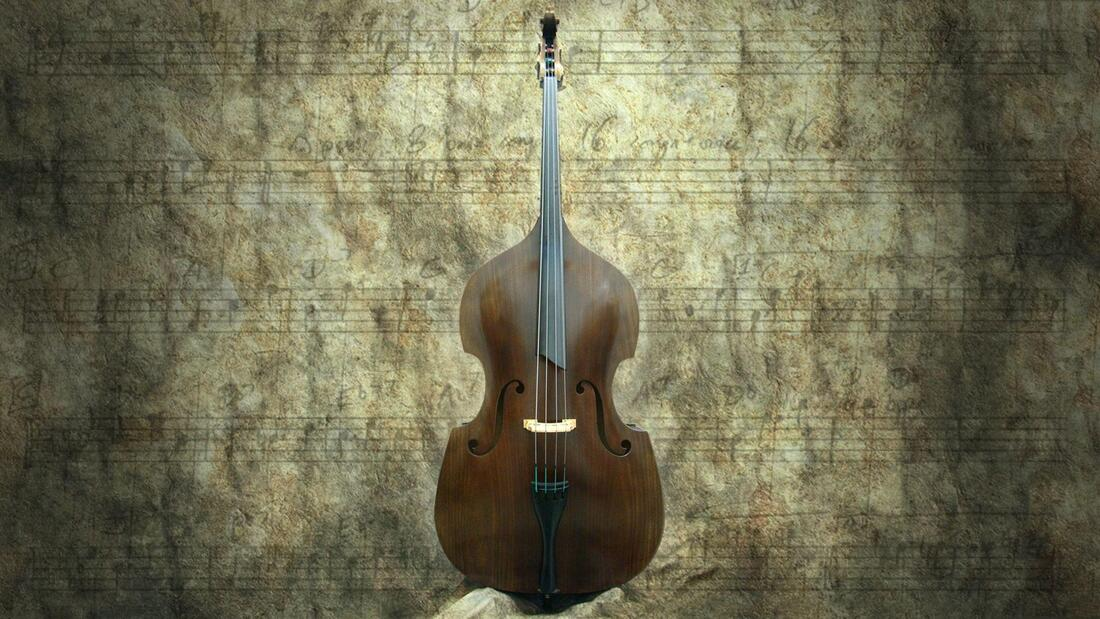 upright bass lessons online at Los Angeles music teachers in Burbank